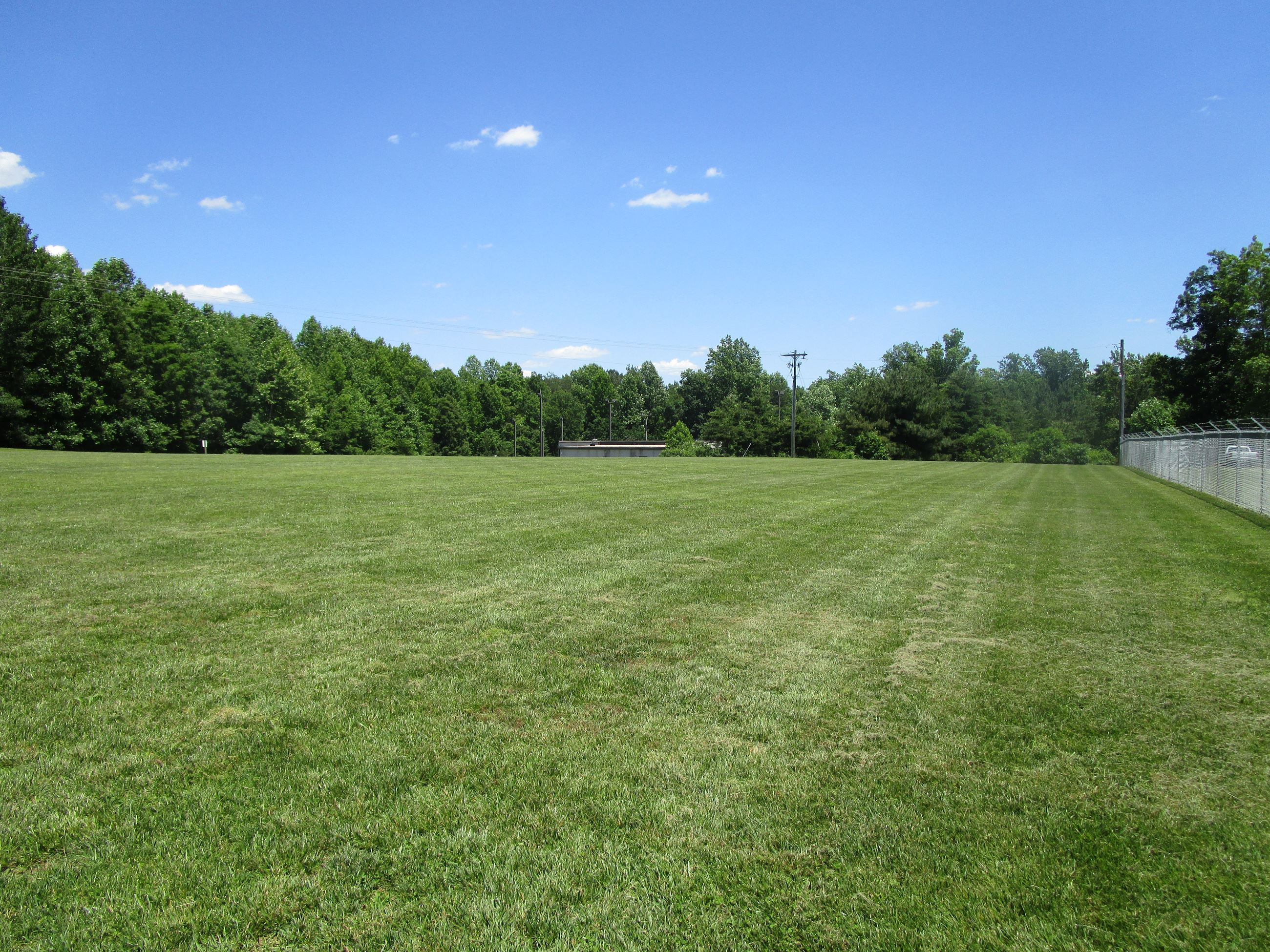 Animal Shelter Field